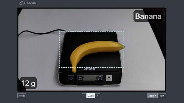 banana-neurala